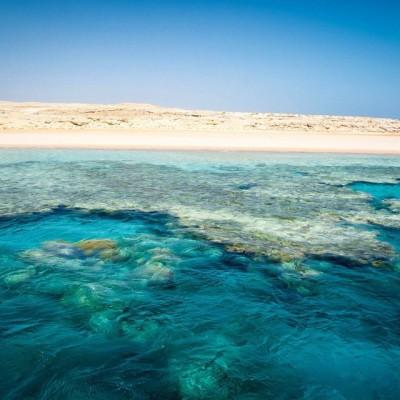 Коралловые рифы подходят к самому берегу