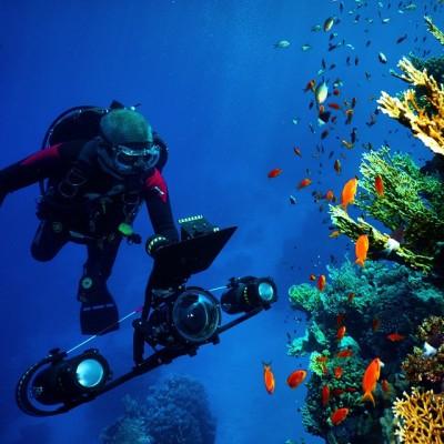 Дайвинг и подводная съемка в Рас-Мохаммед
