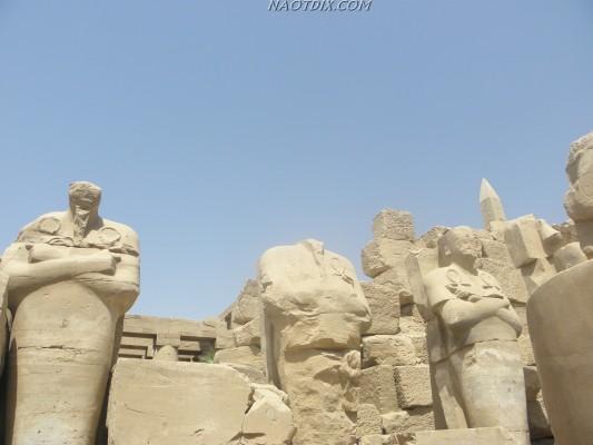 прогуливаясь по которому видишь то здесь, то там головы фараонов, сфинксов, обелисков